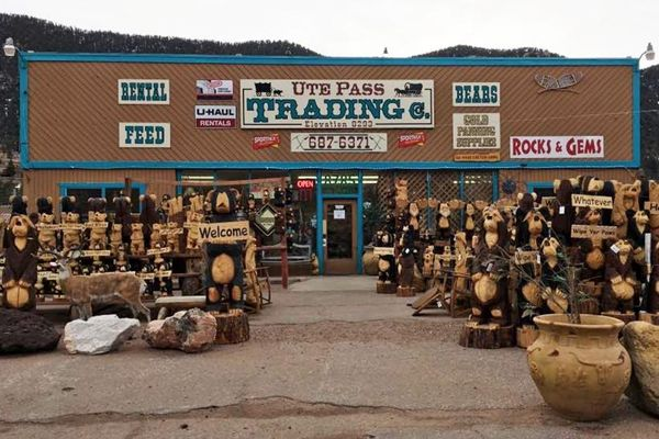 Chainsaw Sharpening, Colorado